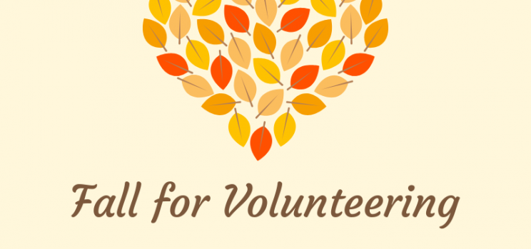 Volunteer Opportunities (Fall)